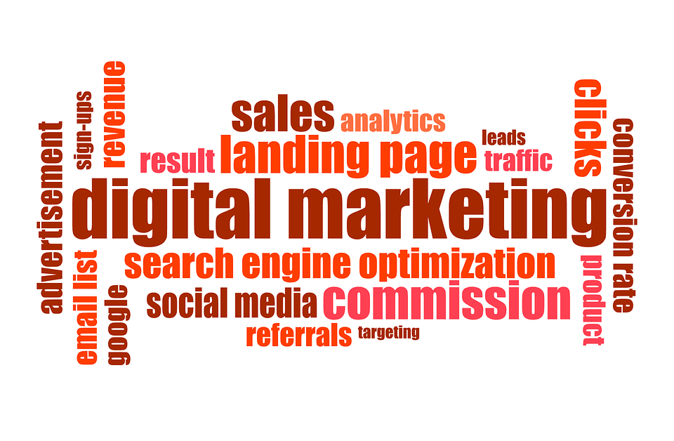 1dweb digital marketing